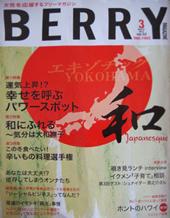 media_berry